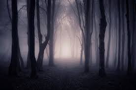 The Dark Part of the Forest #10